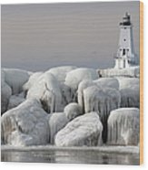 Great Lakes Lighthouse With Ice Covered Wood Print