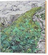 Great Wall Of China 201839 Wood Print