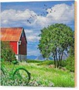 Green Bike On The Farm Wood Print