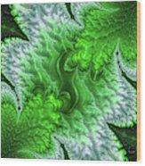 Green Frosty Canyon Wood Print