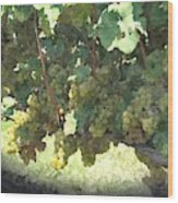 Green Grapes On The Vine 17 Wood Print