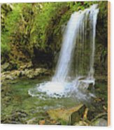 Grotto Falls On Trillium Gap Trail In Smoky Mountains National Park Wood Print