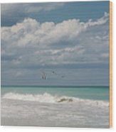 Group Of Pelicans Above The Ocean Wood Print