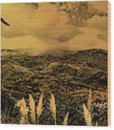 Gualaceo, Ecuador Panorama  Wood Print