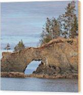 Halibut Cove Rock Formation Kenai Peninsula Alaska Wood Print