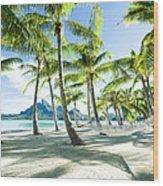 Hammock At Bora Bora, Tahiti Wood Print