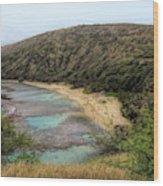 Hanauma Bay Beach Park Wood Print