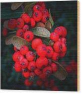 Happy Berries Wood Print