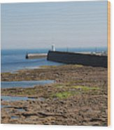harbour at Seahouses on hazy summer day Wood Print