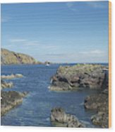 harbour entrance at St. Abbs, Berwickshire Wood Print