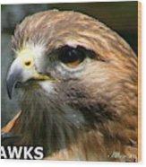 Hawks Mascot 2 Wood Print
