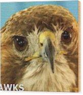 Hawks Mascot 4 Wood Print