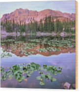 Hayden Peak And Butterfly Lake, Uinta Wood Print