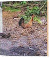 He'eia Kea Chickens Wood Print