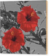 Hibiscus Selective Color Wood Print