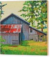 Hidden Sheep Barn Wood Print