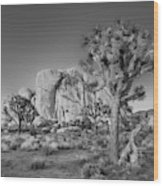 Hidden Valley Rock Wood Print