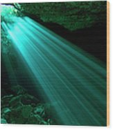 Hidden Worlds Cenotes, Yucatan Mexico Wood Print