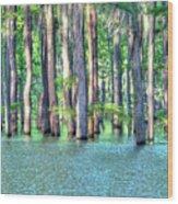 High Bayou Water Wood Print