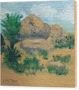 High Desert Rock Garden Wood Print