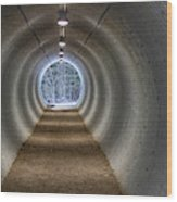 Highway Underpass In Pigeon River Provincial Park Wood Print
