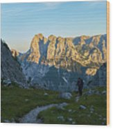 Hiker In The Morning Wood Print