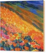 Hillside Poppy Burst Wood Print