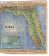 Historical Map Hand Painted Vintage Florida Colton Wood Print