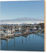 Homer Alaska Fishing Port Wood Print