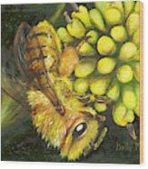 Honey Bee On Wild Golden Glow Wood Print