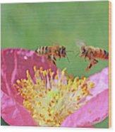 Honeybees Wood Print