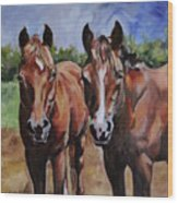 Horse Art  Wood Print