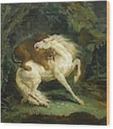 Horse Attacked By A Lion Wood Print