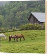 Horse Farm Wood Print