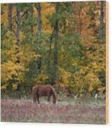 Horse In Fall Wood Print