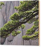 Huang Shan Landscape, China Wood Print
