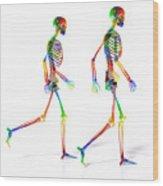 Human Skeleton Pair Wood Print