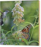 Hummingbird And Monarch Wood Print