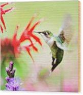 Hummingbird Fancy Wood Print