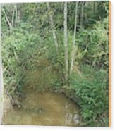 I Am A Small Stream With Big Impact Wood Print