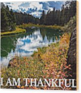 I Am Thankful Wood Print