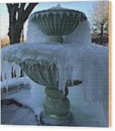 Ice Fountain Wood Print