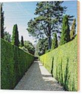 Ickworth House, Image 7 Wood Print