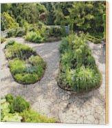 If Gulliver Had A Herb Garden Wood Print
