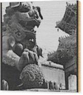 Imperial Lion  Beijing    Wood Print