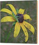 In The Meadow Wood Print