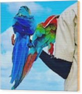 Island Birds  Wood Print