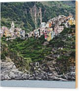 Italy, Liguria, Corniglia, View From Wood Print