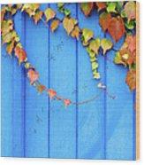 Ivy On The Door Wood Print