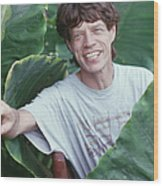 Jagger On Holiday Wood Print